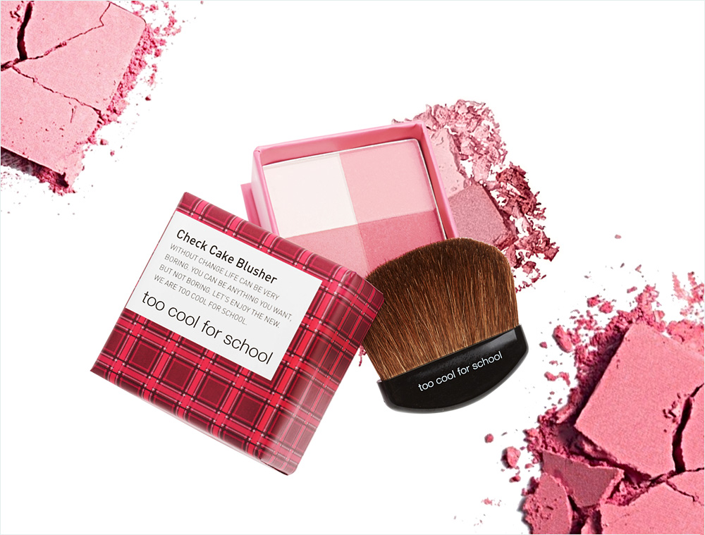 Too Cool For School Check Cake Blusher